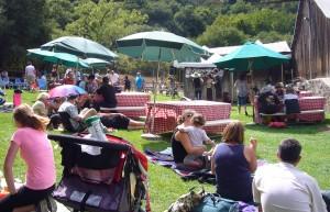 Picnic at Picchetti Winery